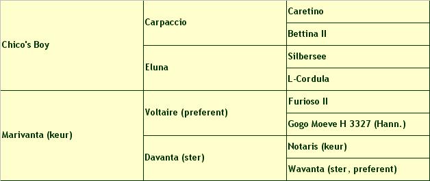 stamboom-corotino