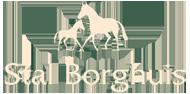 Stal Borghuis